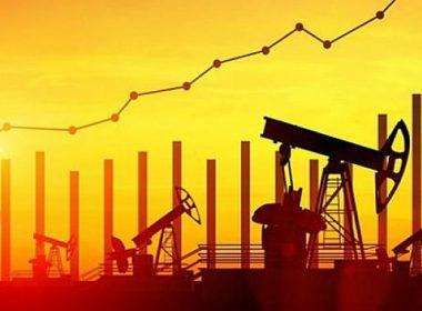 petrol talebi