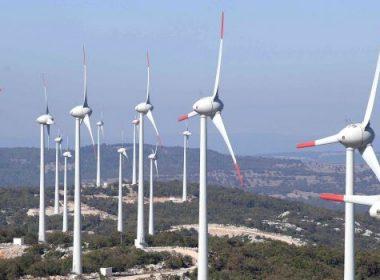 Polat Holding enerjiye ortak aldı